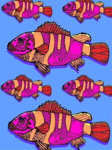 fishrn3